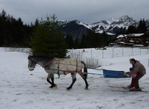 ski-joering in the Portes du Soleil, Haute Savoie